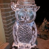 Owl Ice Carving