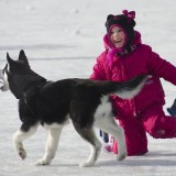Skating With Puppy by Judi M